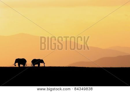 Two silhouetted elephants in Amboseli National Park, Kenya
