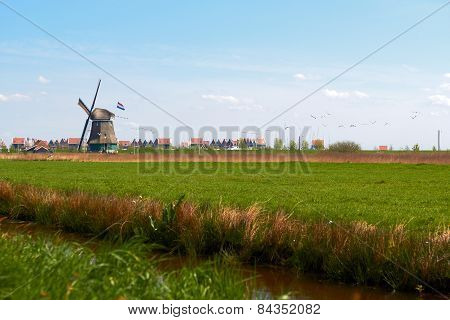 charming landscape with Dutch windmill  bright spring day