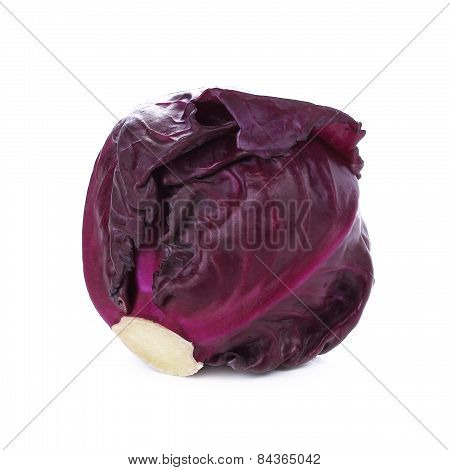 Red Cabbage, Violet Cabbage Isolated On White