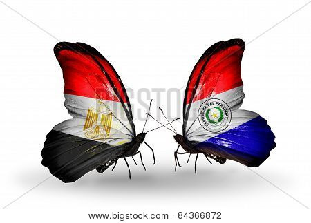 Two Butterflies With Flags On Wings As Symbol Of Relations Egypt And Paraguay