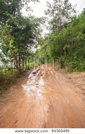 Dirt Road In A Rural Area.