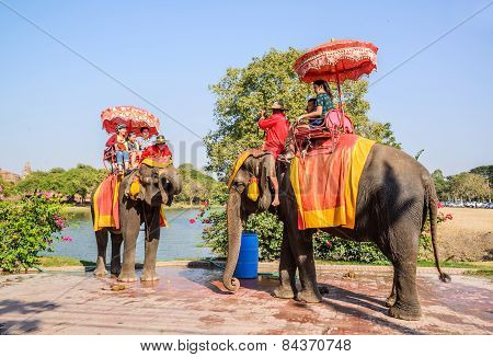 Ayuthaya Thailand-january 2 : Tourist Riding On Elephant Back Past Ancient Pagoda In Ayuthaya Famous
