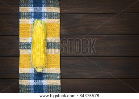 Cob of Sweet Corn