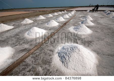 Row Of Salt Pile.