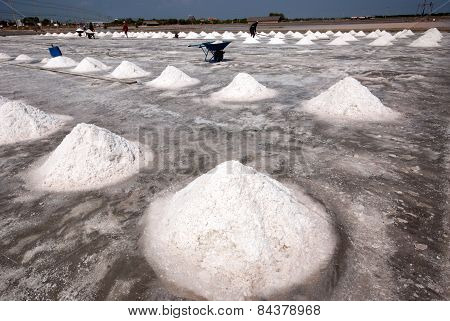Workers Are Working At A Salt Farm In Thailand.