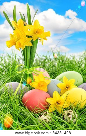 Easter Eggs Decoration And Daffodils Flowers. Blue Sky With Lens Flares