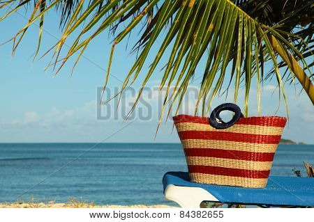 Striped Red Bag Under Palm Frond