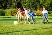 stock photo of summer fun  - Four preschool kids playing with the ball - JPG