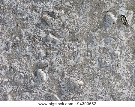 Rough Light Gray Concrete Texture