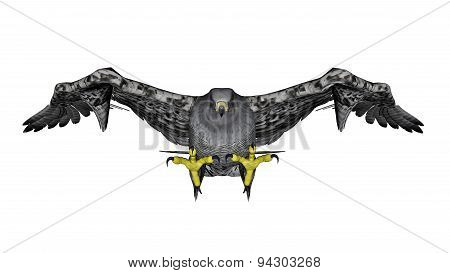 Grey falcon flying - 3D render