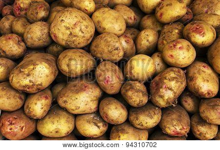 White Potatoes Background