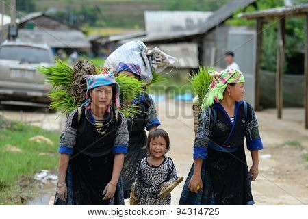 Thai ethnic minority people in Mucangchai, Vietnam