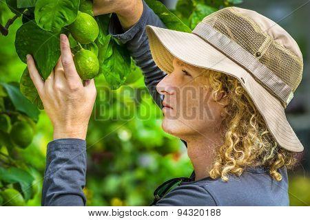 Farmer lemons