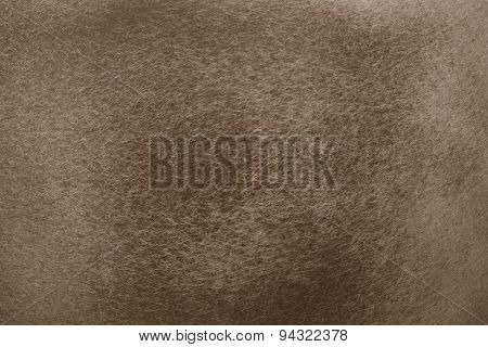 Brown Polish Texture On The Metal