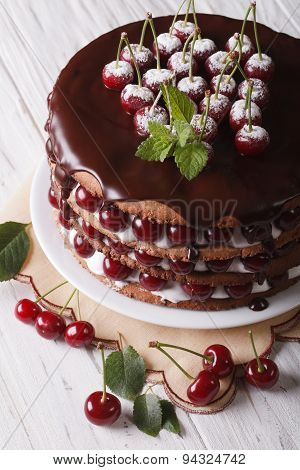 Big Cherry Cake With Chocolate Icing Vertical