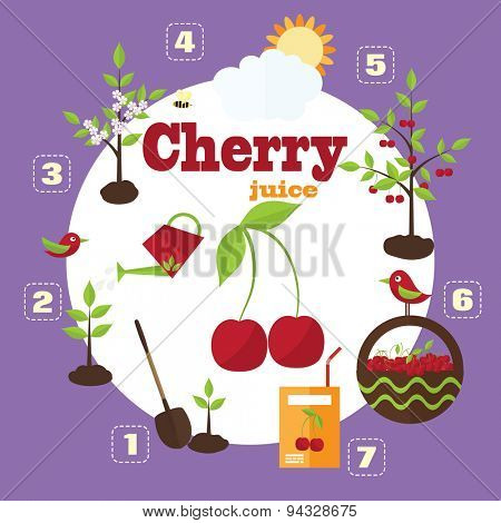 Vector illustration of a garden in the style of the flat. Planting cherry trees, harvesting, processing cherries in juice.