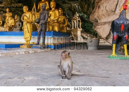 Monkey Seats On The Statue