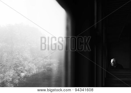Passenger In Train