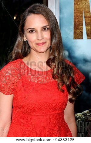 LOS ANGELES - JUN 23:  Rachael Leigh Cook at the