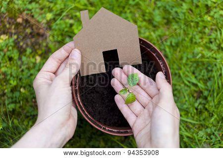 eco friendly living concept