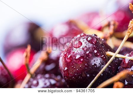Closeup image of ripe cherries