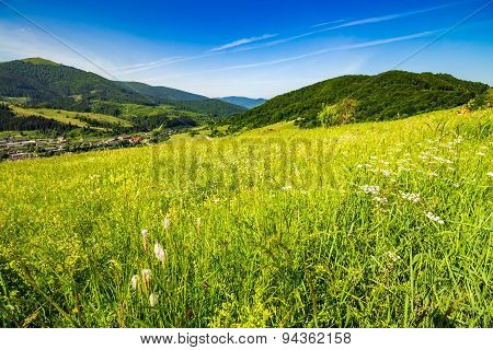 Village On Hillside Meadow