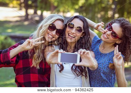 Happy hipsters taking a selfie in the park on a sunny day