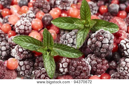 Background Of Frozen Berry Fruits With Mint