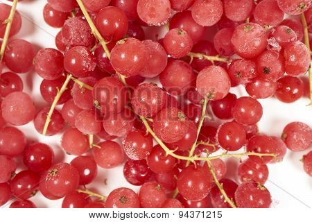 Frozen Currants With Stems