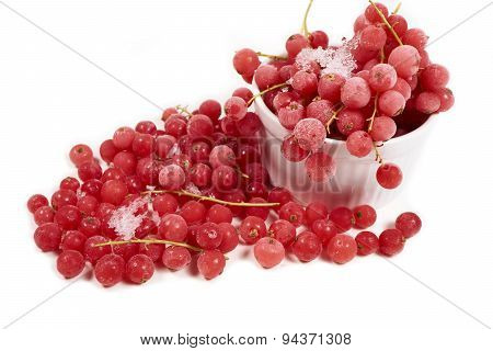 Currants With Stems, Frozen In White Bowl