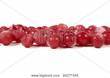 Some Frozen Currants On White