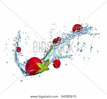 Cherries in water splashes, isolated on white background
