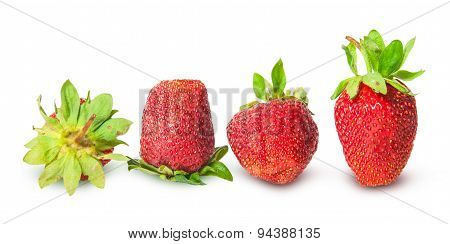 Several Strawberries In A Row