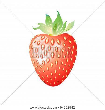 Delicious Wild Berry Strawberry