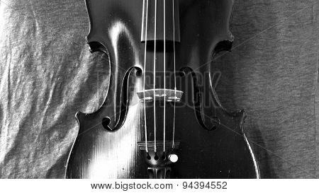 Black And White Violin Panorama