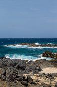 picture of volcanic  - Black volcanic rock on shore of Aruba - JPG