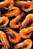 foto of tiger prawn  - Grilled prawns on the grill - JPG
