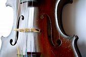 image of violin  - Antique violin against white backround - JPG