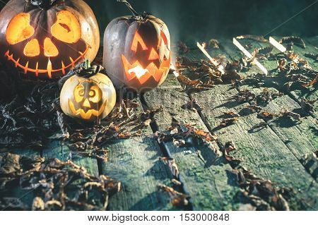 Halloween pumpkins at wood background. Carved scary faces of pumpkin. Night horror. October holiday. Pumpkin family
