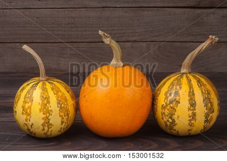 Orange and striped decorative pumpkins on a wooden background.