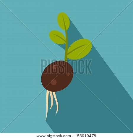 Green potato sprout from the root icon. Flat illustration of vector icon for web isolated on light blue background