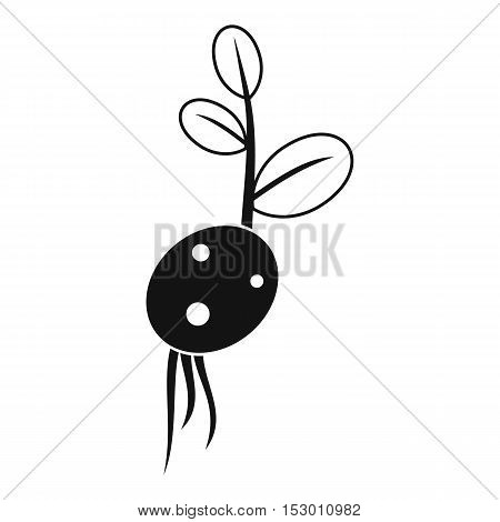 Potato sprout from the root icon. Simple illustration of potato sprout from the root vector icon for web