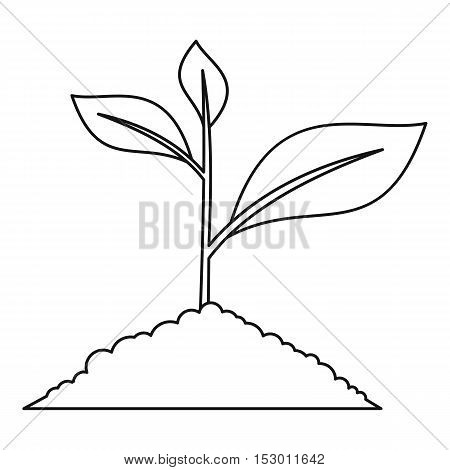Young plant icon. Outline illustration of young plant vector icon for web