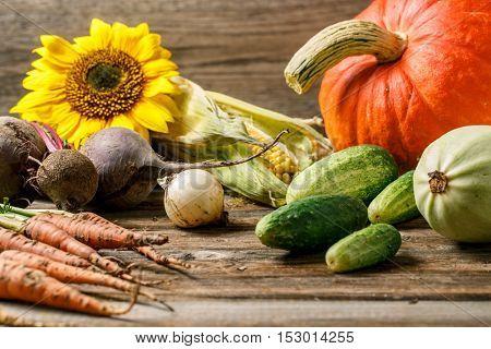 Vegetables on vintage wood background