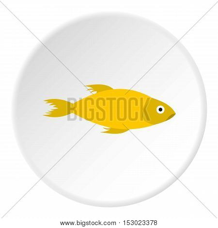 Yellow marine fish icon. Flat illustration of yellow marine fish vector icon for web