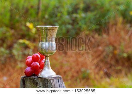 Tasty Wine On Wooden Barrel Grape Background