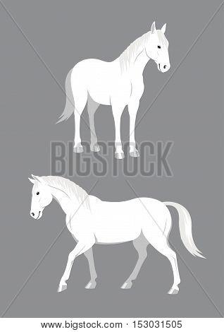 White horse - Vector illustration - EPS .