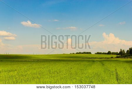 Scenic View Green Plain