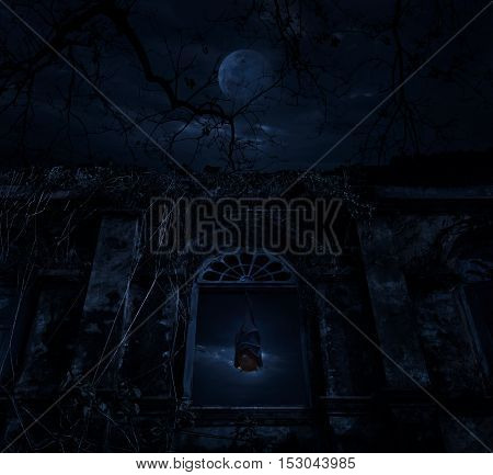 Bat sleep and hang on ancient window castle with dead tree over moon and cloudy sky Spooky background Halloween concept