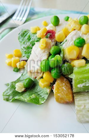 Delicious clean chicken salad on a plate.